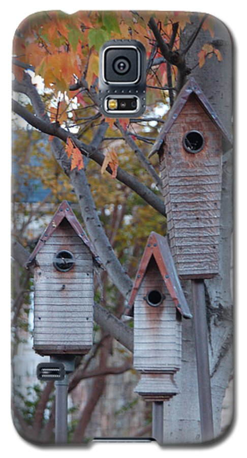 Birdhouse Galaxy S5 Case featuring the photograph Awaiting Spring by Suzanne Gaff