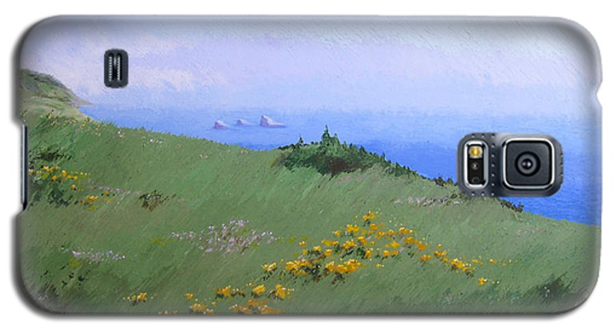 Landscape Galaxy S5 Case featuring the painting Big Sur by Hunter Jay