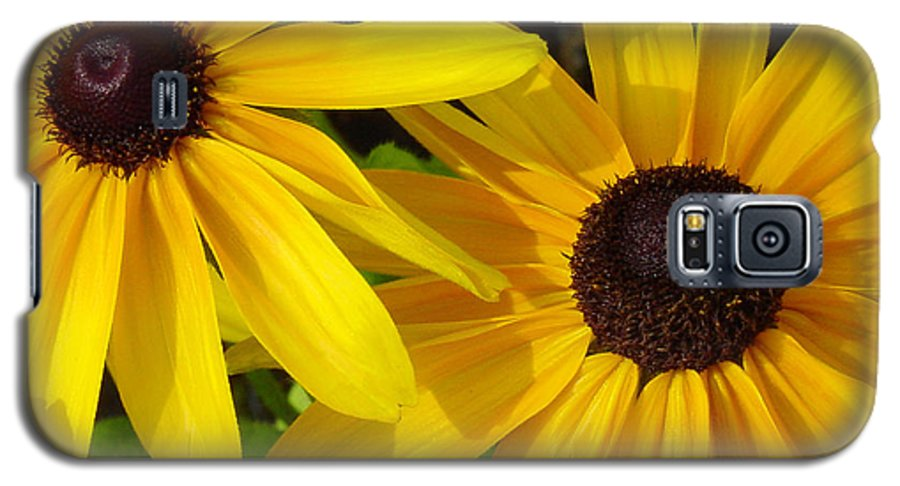 Black Eyed Susan Galaxy S5 Case featuring the photograph Black-eyed Susans Close Up by Suzanne Gaff