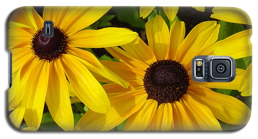 Black Eyed Susan Galaxy S5 Case featuring the photograph Black Eyed Susans by Suzanne Gaff