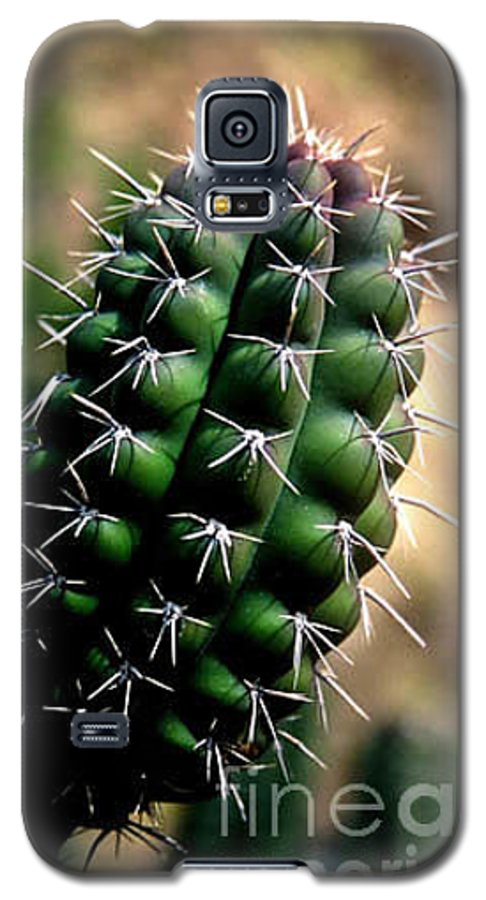 Sahuaro Galaxy S5 Case featuring the photograph Cactus Arm by Kathy McClure