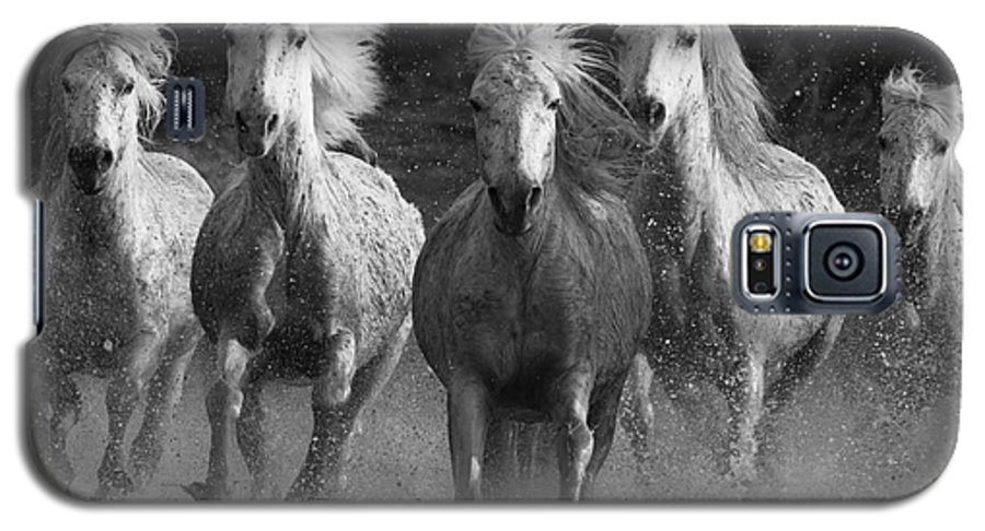 Camargue Galaxy S5 Case featuring the photograph Camargue Horses Running by Carol Walker