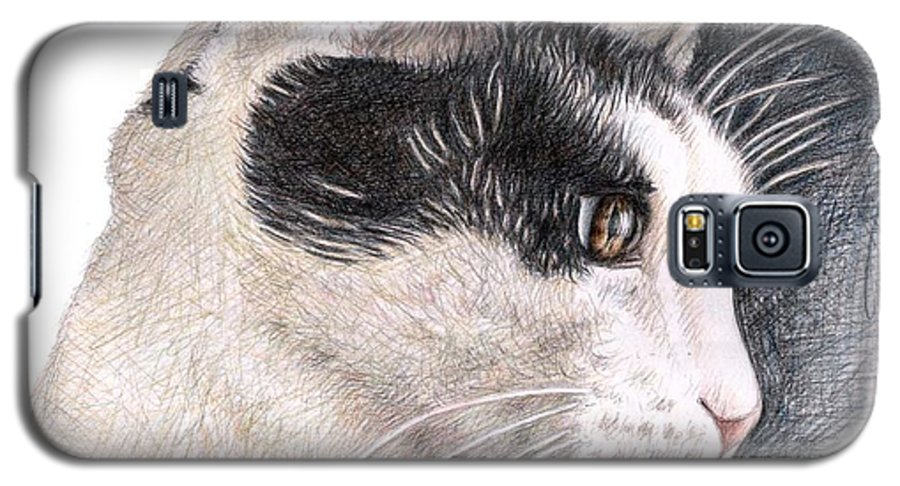 Cat Galaxy S5 Case featuring the drawing Cats View by Nicole Zeug