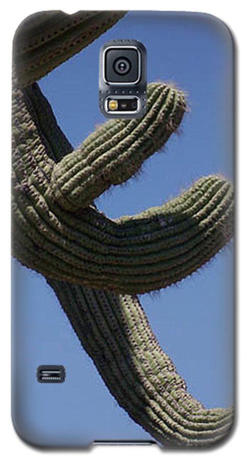 Saguaro Galaxy S5 Case featuring the photograph Come Hither by Kathy McClure