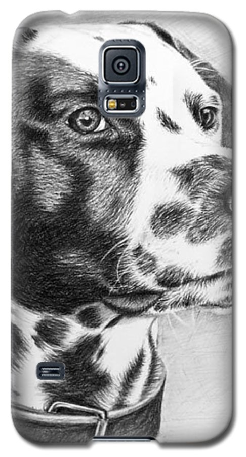 Dog Galaxy S5 Case featuring the drawing Dalmatian Portrait by Nicole Zeug