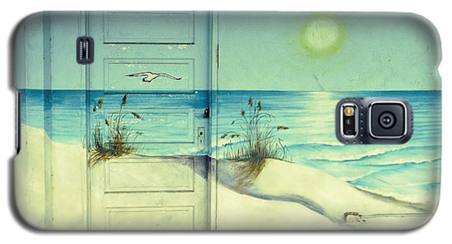 Architecture Galaxy S5 Case featuring the photograph Door Of Perception by Skip Hunt