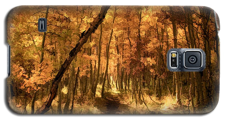 June Lake Galaxy S5 Case featuring the photograph Down The Golden Path by Donna Kennedy