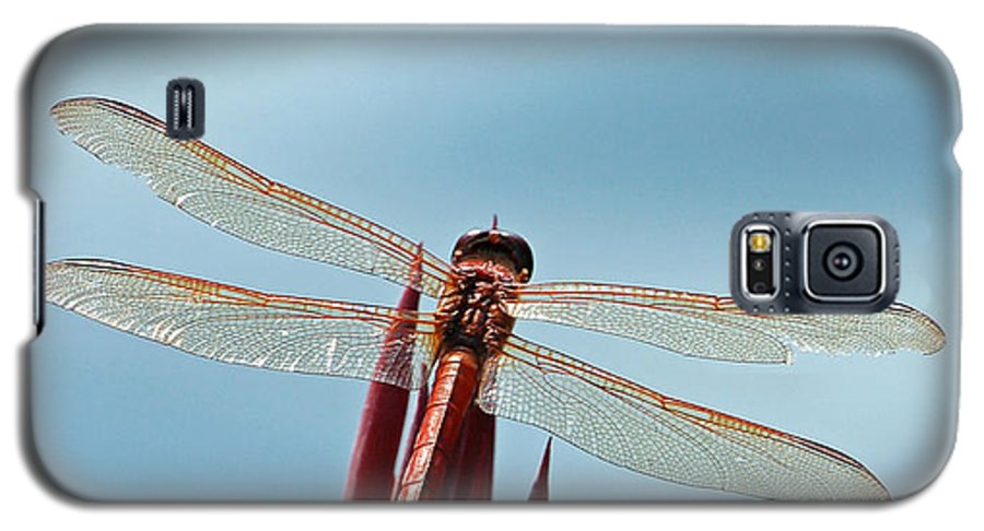 Dragonfly Galaxy S5 Case featuring the photograph Dragonfly Days by Suzanne Gaff
