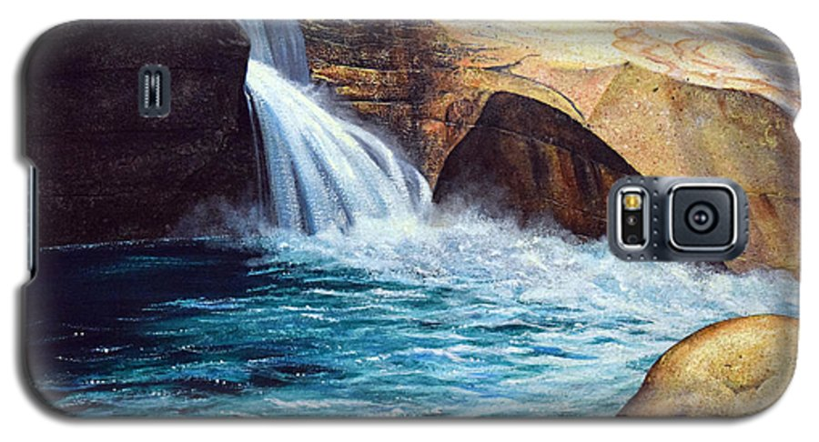 Emerald Pool Galaxy S5 Case featuring the painting Emerald Pool by Frank Wilson