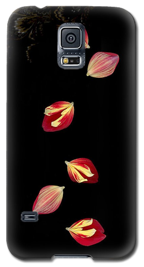 Petal Galaxy S5 Case featuring the photograph Falling by Suzanne Gaff