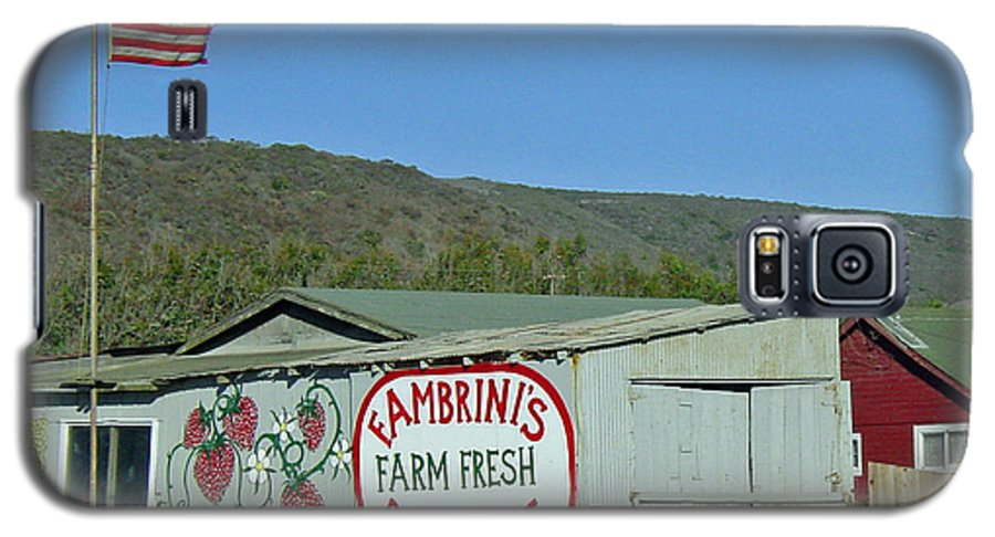 Farm Fresh Produce Galaxy S5 Case featuring the photograph Fambrini's Farm Fresh Produce by Suzanne Gaff