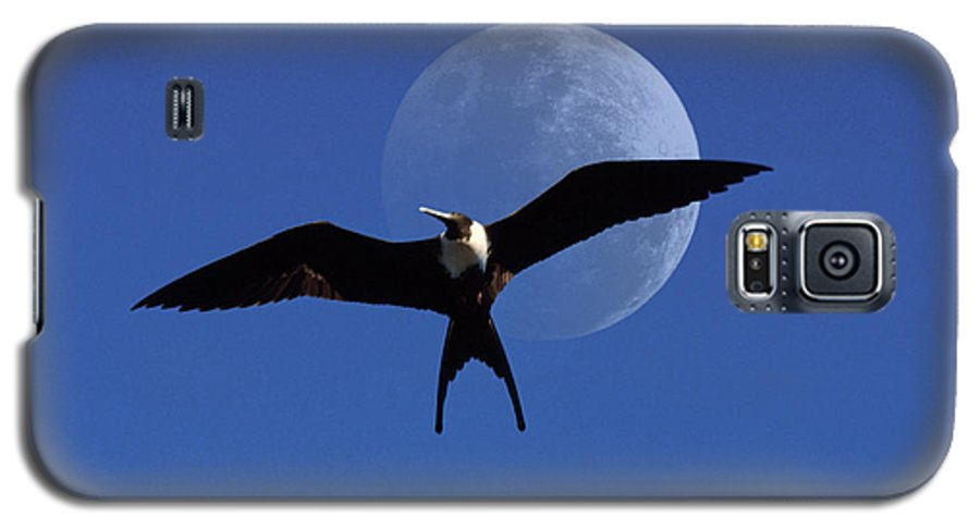 Frigate Galaxy S5 Case featuring the photograph Frigatebird Moon by Jerry McElroy