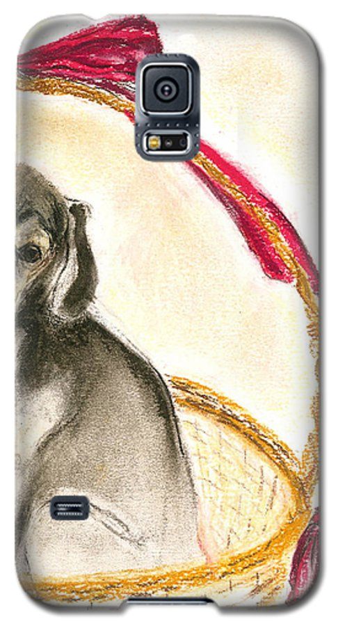 Dog Galaxy S5 Case featuring the drawing Gift Basket by Cori Solomon
