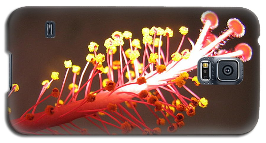 Hibiscus Galaxy S5 Case featuring the photograph Hibiscus by Mary Ellen Mueller Legault