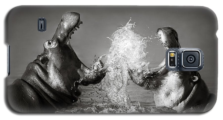 Hippo Galaxy S5 Case featuring the photograph Hippo's Fighting by Johan Swanepoel