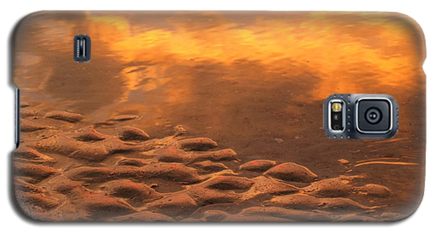 Sunrise Galaxy S5 Case featuring the photograph Hunting Island Sunrise Reflections by Anna Lisa Yoder