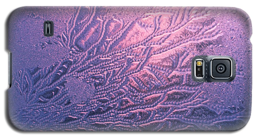 Frost Galaxy S5 Case featuring the photograph Jack Frost Window At Dawn by Anna Lisa Yoder