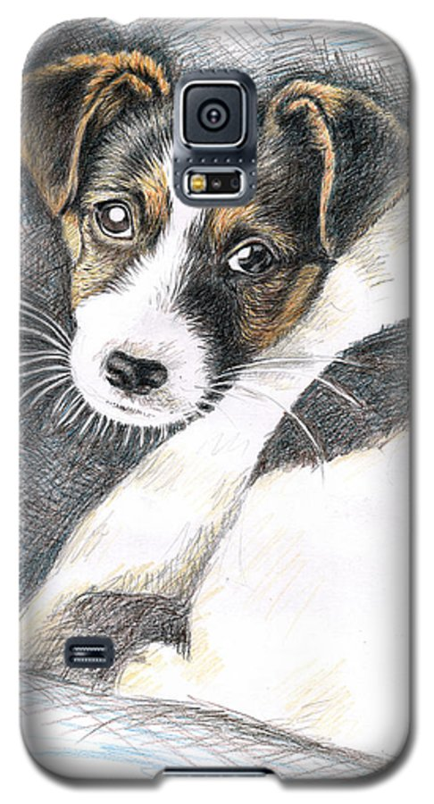 Dog Galaxy S5 Case featuring the drawing Jack Russell Puppy by Nicole Zeug