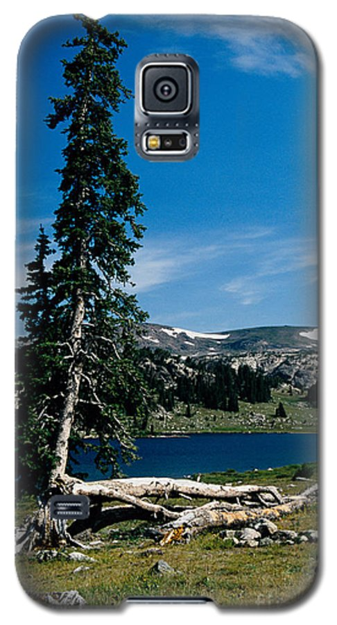 Mountains Galaxy S5 Case featuring the photograph Lone Tree At Pass by Kathy McClure