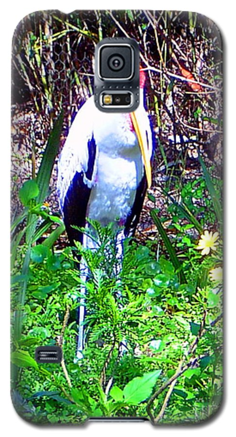 Bird Galaxy S5 Case featuring the photograph Lonely Bird by Heather Morris