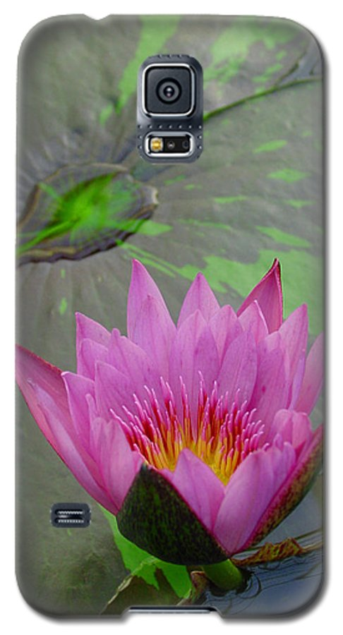 Lotus Galaxy S5 Case featuring the photograph Lotus Blossom by Suzanne Gaff