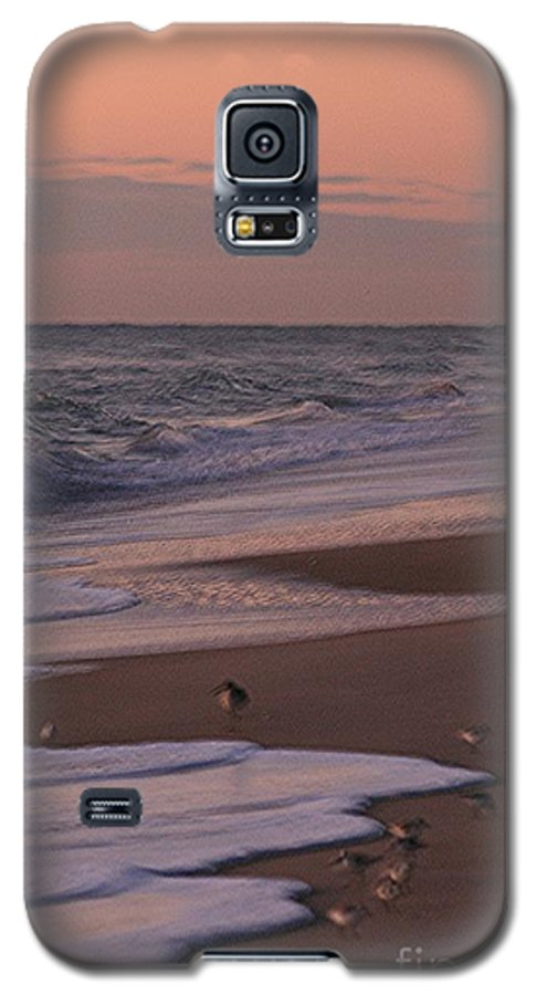 Beach Galaxy S5 Case featuring the photograph Morning Birds At The Beach by Nadine Rippelmeyer