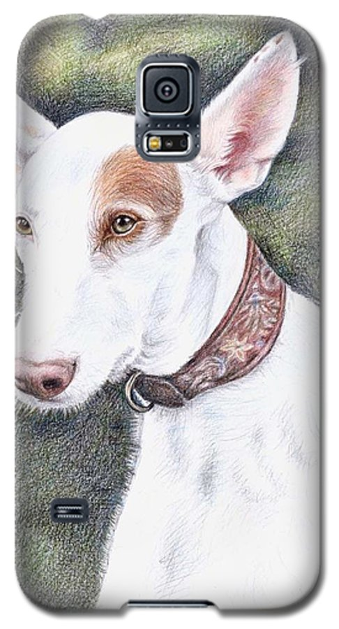 Dog Galaxy S5 Case featuring the drawing Podenco Ibicenco by Nicole Zeug