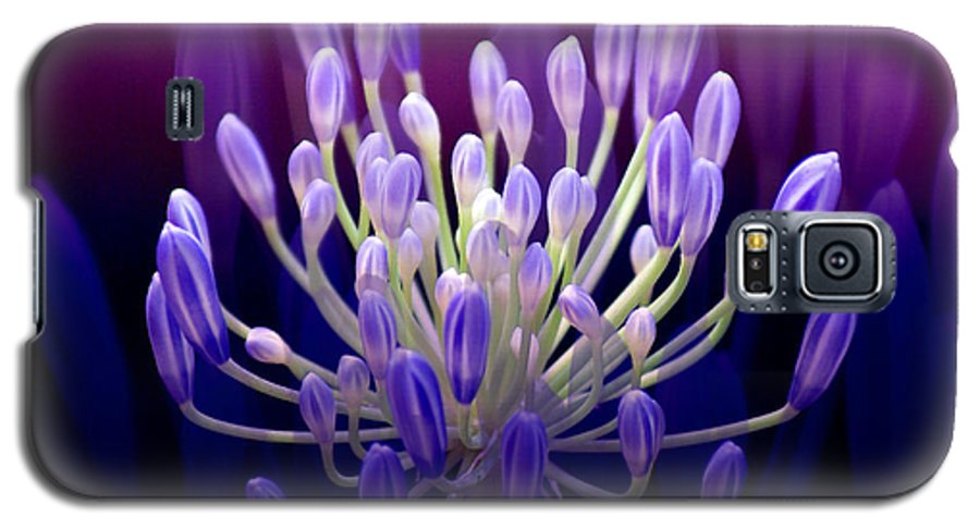 Agapanthus Galaxy S5 Case featuring the photograph Praise by Holly Kempe