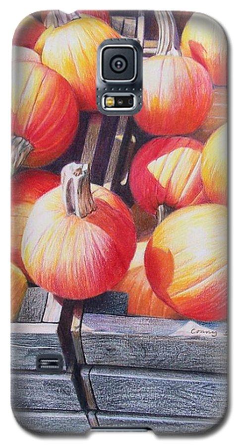 Pumpkins Galaxy S5 Case featuring the painting Pumpkins by Constance Drescher
