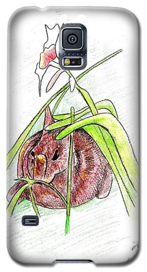 Rabbit Galaxy S5 Case featuring the drawing Rabbit by Loretta Nash