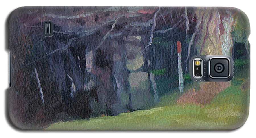 Landscape Galaxy S5 Case featuring the painting Red Top Fence Post by John L Campbell