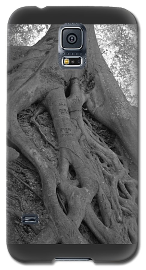 Tree Galaxy S5 Case featuring the photograph Roots II by Suzanne Gaff