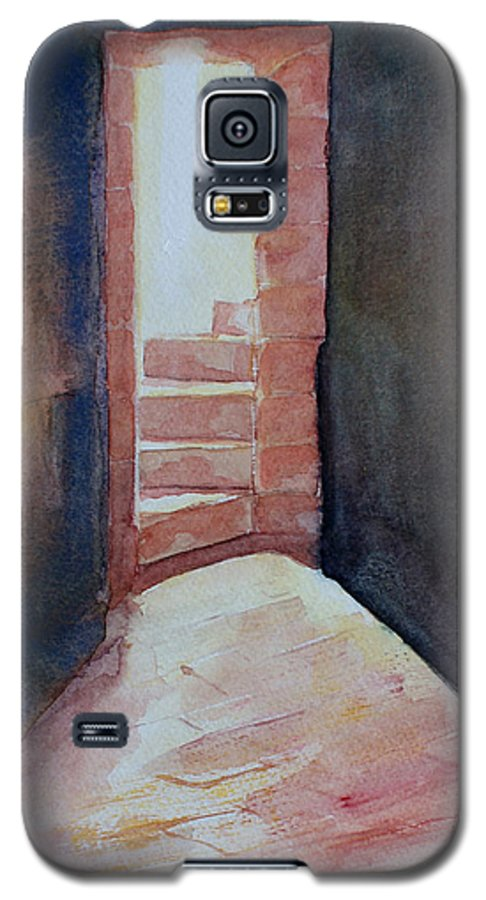 Light Galaxy S5 Case featuring the painting Secrets by Janice Gell