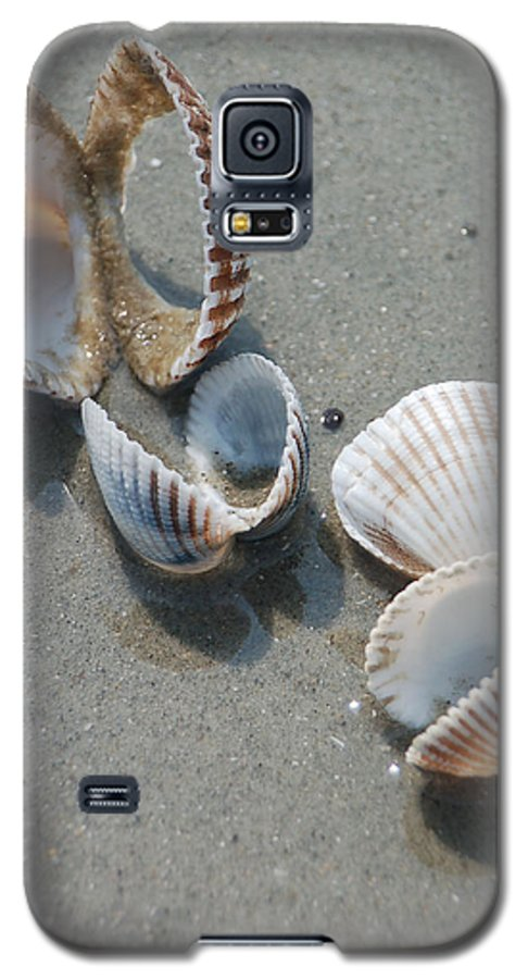 Sea Shell Galaxy S5 Case featuring the photograph She Sells Sea Shells by Suzanne Gaff