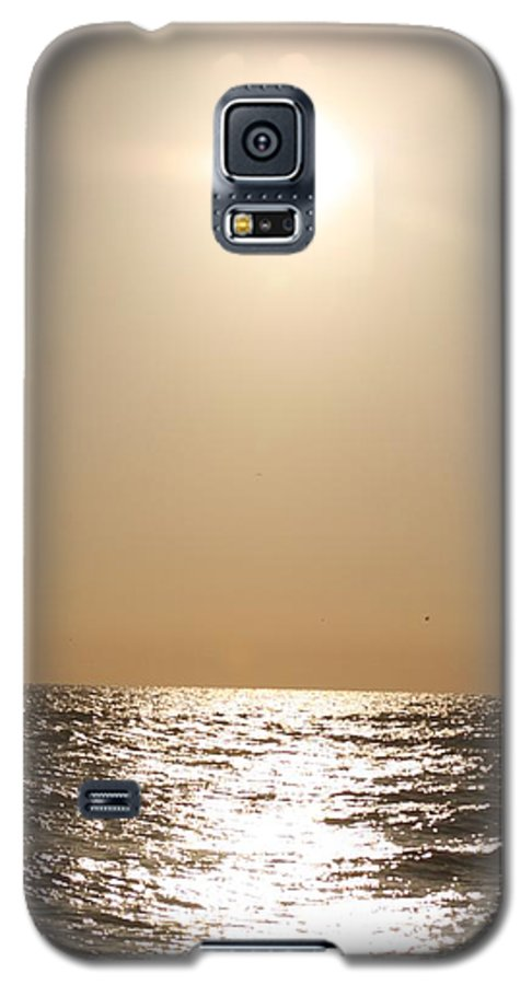 Silver Galaxy S5 Case featuring the photograph Silver And Gold by Nadine Rippelmeyer