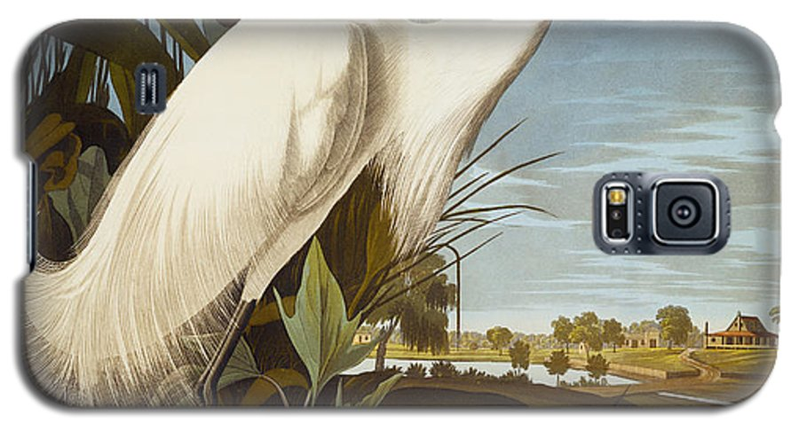 Bird Galaxy S5 Case featuring the painting Snowy Heron Or White Egret by John James Audubon