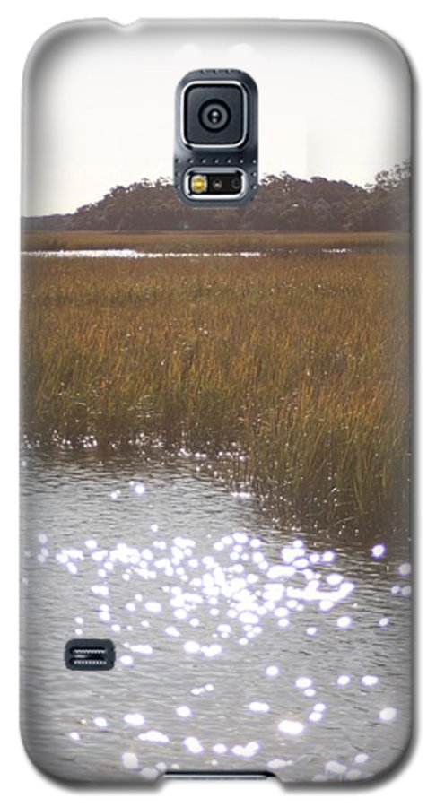 Marsh Galaxy S5 Case featuring the photograph Sparkling Marsh by Nadine Rippelmeyer