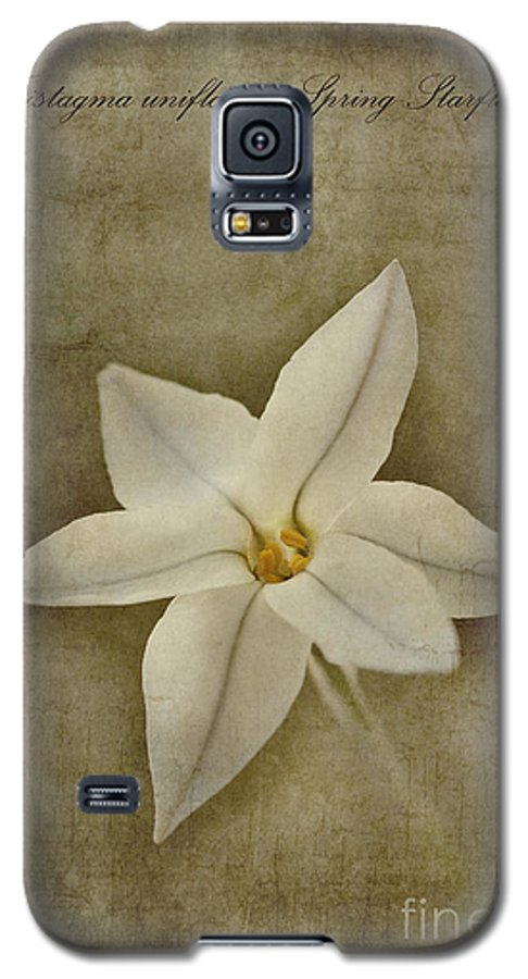 Tristagma Uniflorum Galaxy S5 Case featuring the photograph Spring Starflower by John Edwards