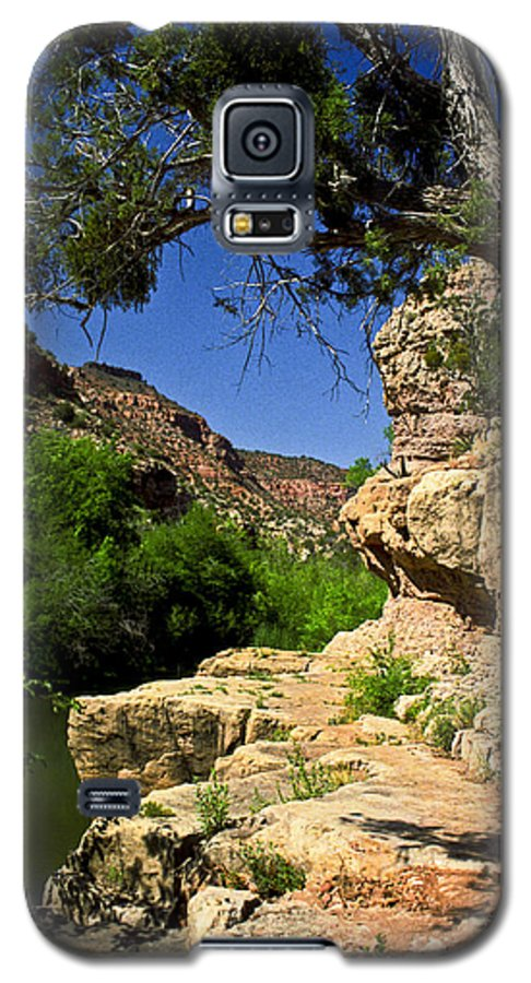 Arizona Galaxy S5 Case featuring the photograph Sycamore Canyon by Kathy McClure