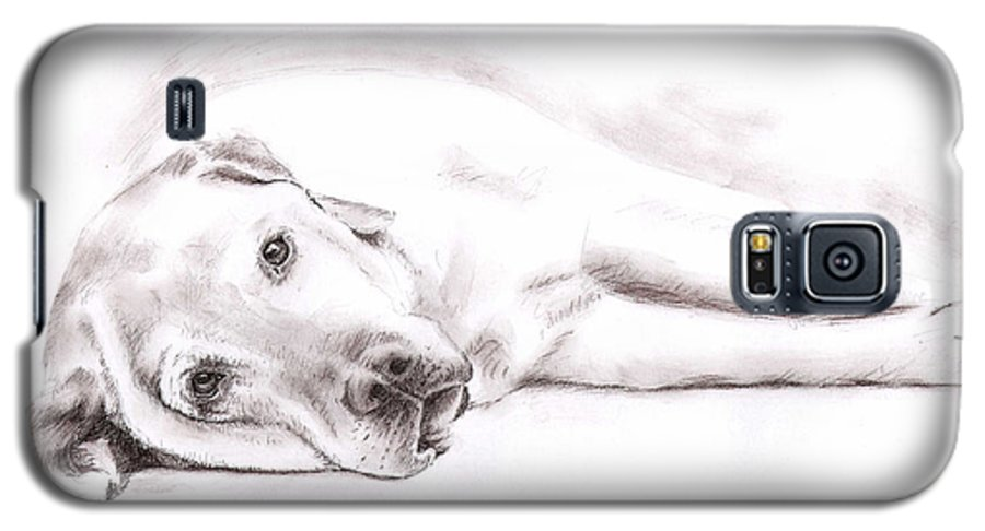 Dog Galaxy S5 Case featuring the drawing Tired Labrador by Nicole Zeug