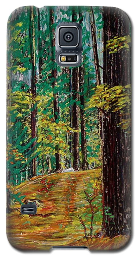 New Hampshire Galaxy S5 Case featuring the pastel Trail At Wason Pond by Sean Connolly