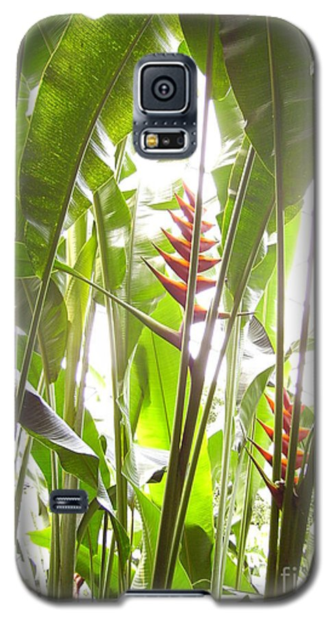 Plants Galaxy S5 Case featuring the photograph Tropical2 by Heather Morris