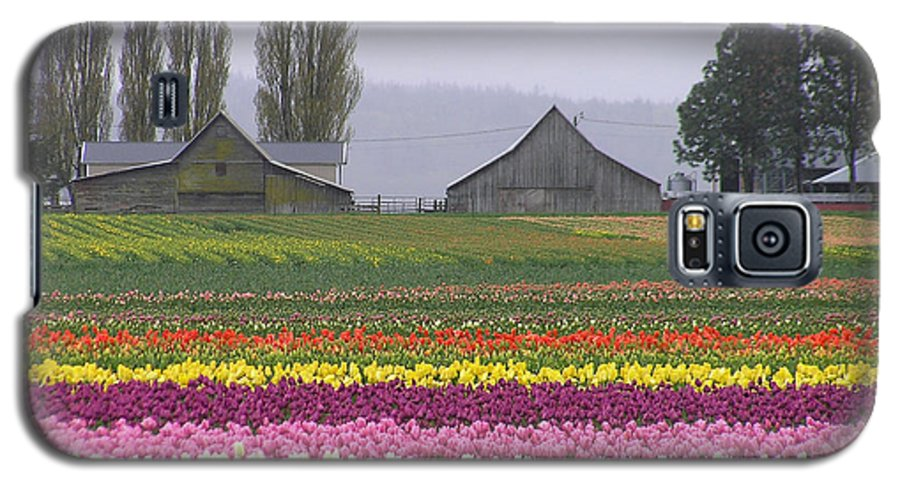 Tulips Galaxy S5 Case featuring the photograph Tulip Town Barns by Louise Magno