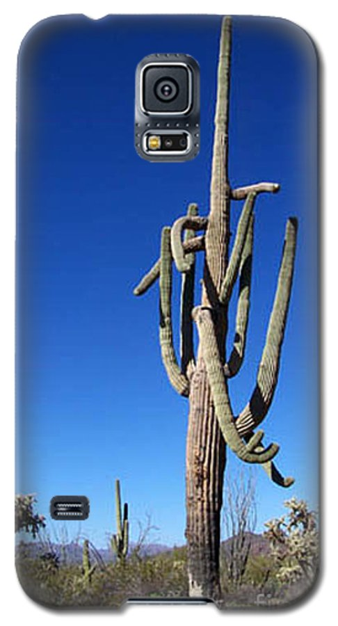 Sahuaro Galaxy S5 Case featuring the photograph Twisted Sentinal by Kathy McClure