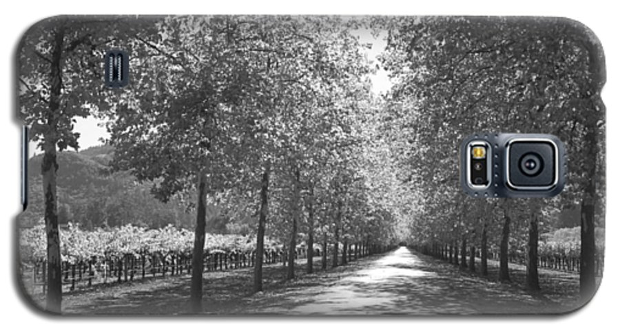 Black And White Galaxy S5 Case featuring the photograph Wine Country Napa Black And White by Suzanne Gaff