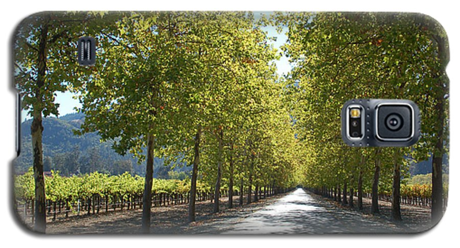Napa Galaxy S5 Case featuring the photograph Wine Country Napa by Suzanne Gaff
