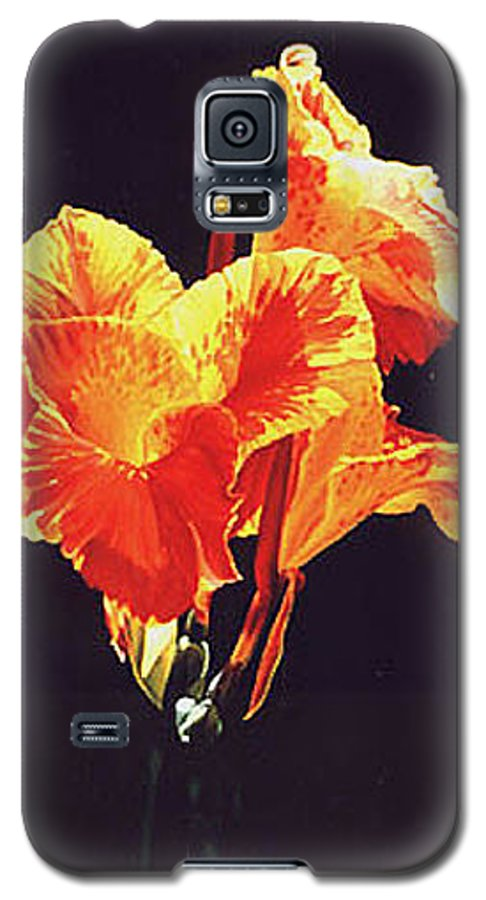 Floral Galaxy S5 Case featuring the painting Yellow Canna by Gary Hernandez