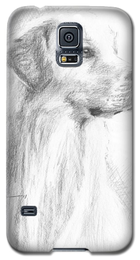 <a Href=http://miketheuer.com Target =_blank>www.miketheuer.com</a> Yellow Labrador Show Dog Pencil Portrait Galaxy S5 Case featuring the drawing Yellow Labrador Show Dog Pencil Portrait by Mike Theuer