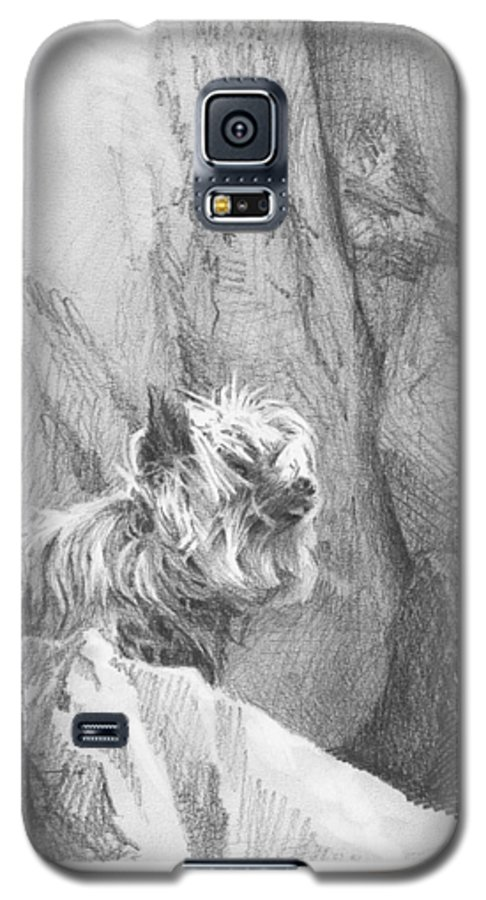 <a Href=http://miketheuer.com Target =_blank>www.miketheuer.com</a> Yorkie Dog On A Cliff Pencil Portrait Galaxy S5 Case featuring the drawing Yorkie Dog On A Cliff Pencil Portrait by Mike Theuer