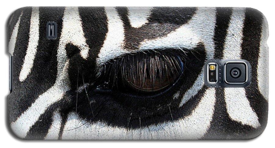 Zebra Galaxy S5 Case featuring the photograph Zebra Eye by Linda Sannuti